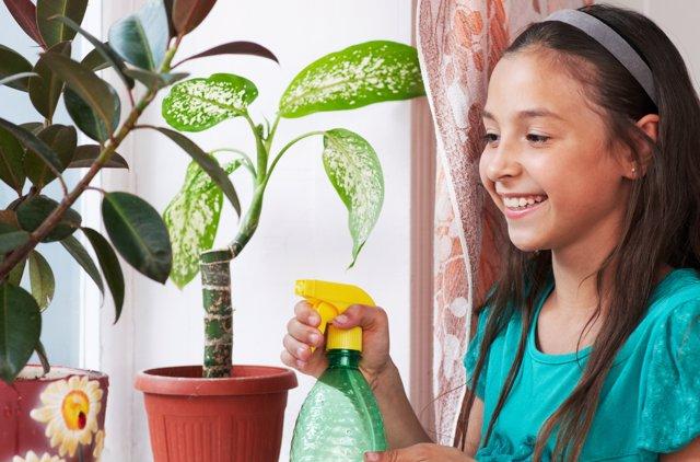 Enseña a cuidar las plantas a los niños
