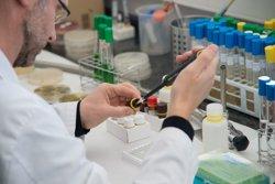 La Universitat de Lleida i Eurecat impulsen la investigació en tecnologia d'aliments (UDL/EURECAT)