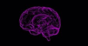 La inflamación del cerebro puede jugar un papel central en el Alzheimer (PIXABAY)
