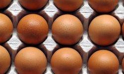 La partida d'ous amb 'fipronil' retirada a Catalunya era d'una empresa de Barcelona (GENCAT)