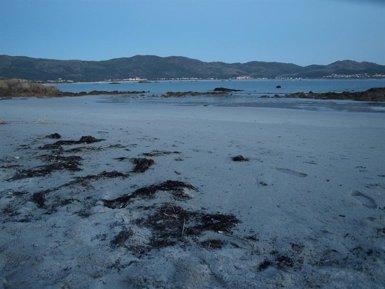 L'home que ha mort en caure al mar a la zona de Castromiñán a Fisterra (la Corunya) recollia percebes de manera furtiva (Europa Press)