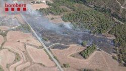 Estabilitzat el foc de Navarcles, que ha afectat unes 8 hectàrees de superfície segons els Agents Rurals (ACN)